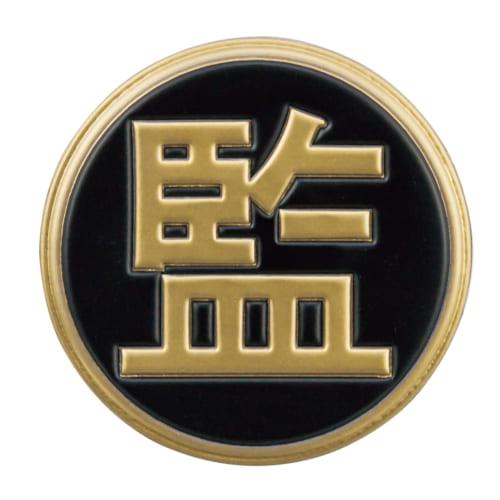 V200W